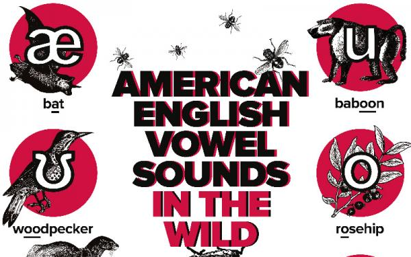 American English Vowel Sounds in the Wild