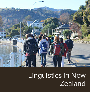 Students walking together in New Zealand